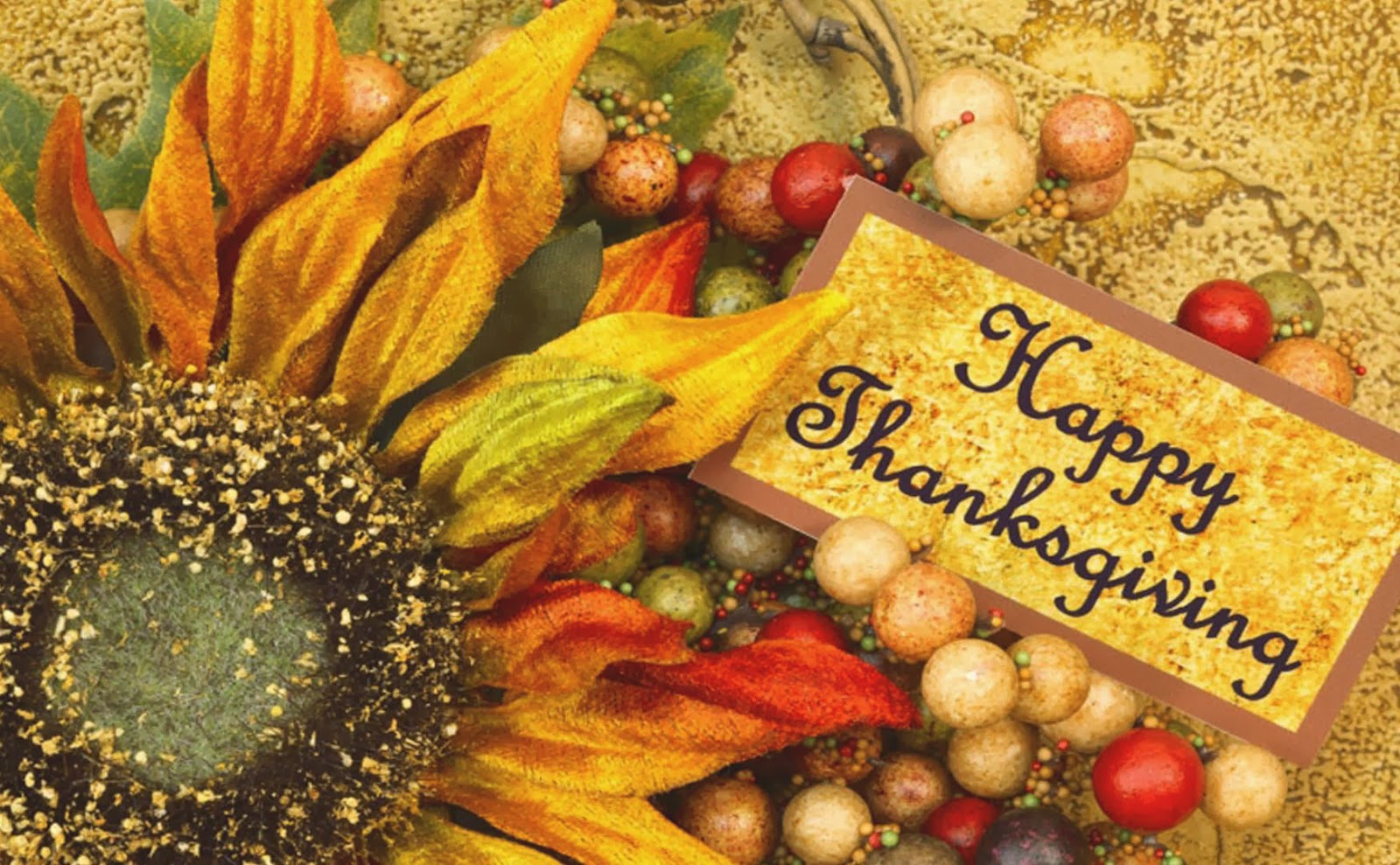 Thanksgiving Logos And Themes From Google and Bing