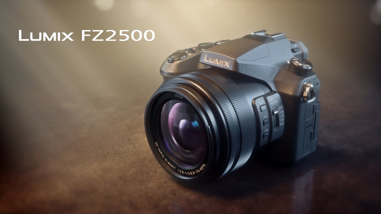 Panasonic 4 K LUMIX FZ2500 Camera