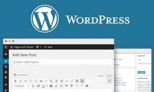 Organize Your WordPress Blog