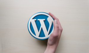 Top 6 WordPress Related Post Plugins to Engage your Visitors